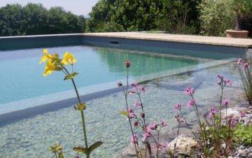 Schwimmteich_Blumen
