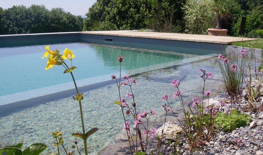 Schwimmteich_Blumen_Schaerrer