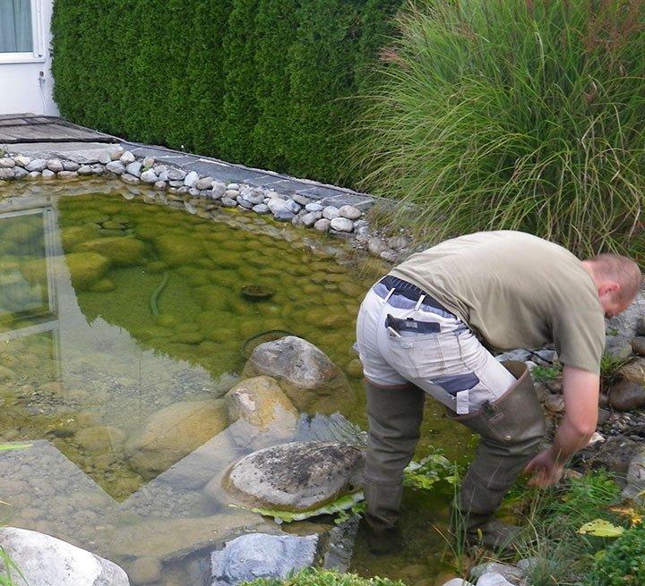 Teichpflege Teichgarten