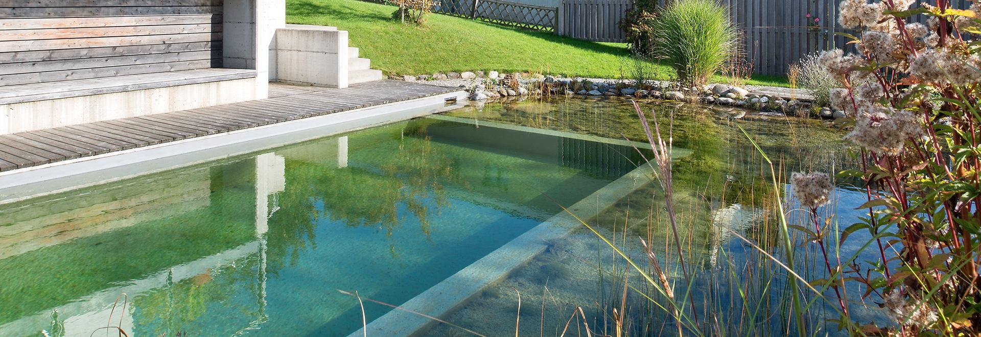 Teichbau Für Die Schönsten Teiche