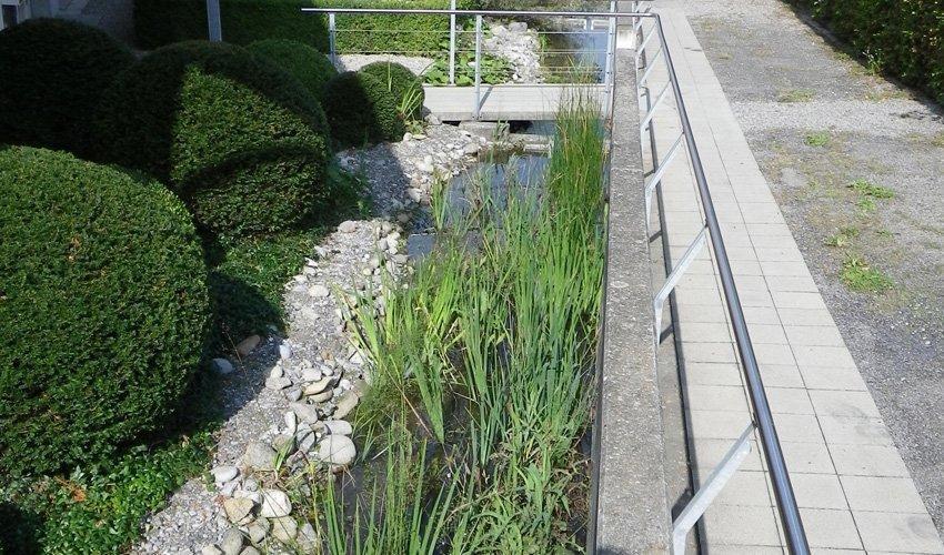 Öffentliche Weiher Teichgarten