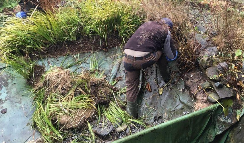 Teichsanierung_Mitarbeiter